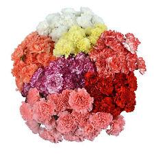 Партии свежих цветов