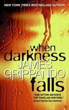 When Darkness Falls by James Grippando (Jack Swyteck #6)(2007, Paperback) GG540