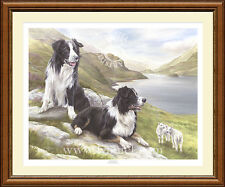 BORDER COLLIES dog print 'Awareness' by Lynn Paterson