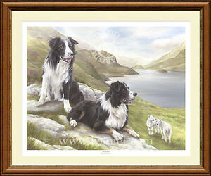 BORDER COLLIES dog print 'Awareness' by Lynn Paterson