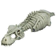 RepStyle Skeleton Dinosaur Decoration Ornament Reptile Vivarium Terrarium