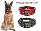 Spiked SKULL Stud Metal Dog Leather Collar Pit Bull Mastiff BLACK RED Large