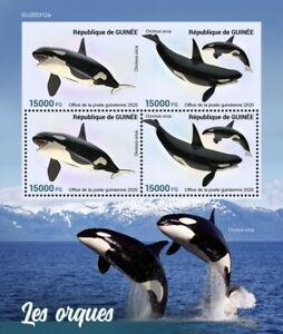Guinea Marine Animals Stamps 2020 MNH Orcas Killer Whales Fauna 4v M/S + IMPF