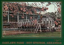 Oaklawn Park Hot Springs Arkansas, Horse Racing Racetrack Starting Gate Postcard