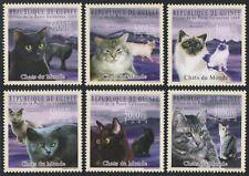 Guinea 2009 - Mi-Nr. 7183-7188 ** - MNH - Katzen / Cats