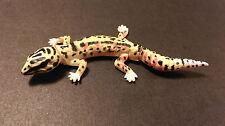 RARE Kaiyodo Furuta Choco Q Pet 1 Yellow Spotted Leopard Gecko Lizard Figure