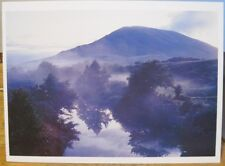 Oversize Irish Postcard NEPHIN County MAYO Connemara Sheep Ireland Tom Kelly