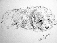 """Lucy Dawson - Quiet Little SEALYHAM TERRIER """"Mrs. Sponge"""" 1946 Dog Print Matted"""