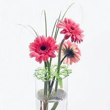 Koziol Bloomi Bloom Bouquet Maker  Set of 2 Flowers in Order Organize Gift green