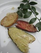 ♫ CITRON CAVIAR microcitrus australasica ♫ Pépins ♫ d'Arbuste Fruits Gustatifs ♫