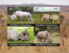 Madagascar 2018 MNH White Rhinoceros Rhinos 4v IMPF M/S Wild Animals Stamps