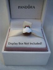 791412ENMX-*RETIRED NEW AUTHENTIC PANDORA CHRISTMAS PUDDING w/MIXED ENAMEL CHARM