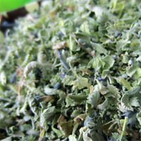 Fresh Organic Dried Catnip Nepeta Cataria Cat Mint Supplies Leaf Flower Herbal