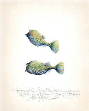 Ocean sea HONEYCOMB COWFISH tropical fish original SIGNED limited edition print