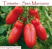 Tomato Seed San Marzano 100 Seeds Heirloom Vegetable Garden Vine Indeterminate