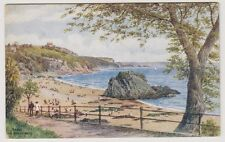 Wales postcard - Tenby, The North Sands - ARQ No. 2344