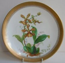 Antique Minton Botanical Cabinet Plate Orchid Design c1873 Gilded Border G1091