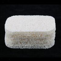 5 Pcs Bathroom Soap Bar Loofa Holder Sponges Scrubber Dish Rack White
