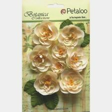 RANUNCULUS - IVORY Fabric  6 @ 50mm & 2 @ 30mm with centres & 6 Leaves Petaloo L