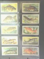1960 Brooke Bond Tea FRESHWATER FISH angling fishing Trading set of 50 cards