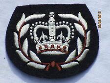 Royal Air Force, RAF Warrant Officer 2, Tg. 60x70mm