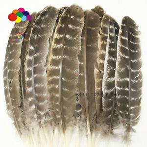 New 10/20/50pcs precious wild turkey wings feathers 20-30/8-12 inches