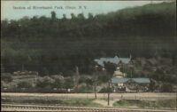 Olean NY Riverhurst Park c1910 Postcard