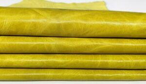 MUSTARD YELLOW  vegetable tan Goatskin leather 2 skins total 6sqf #7552