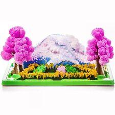 Magic croissance jardin-Kit de culture cristal éducatif jouet-idée cadeau fun