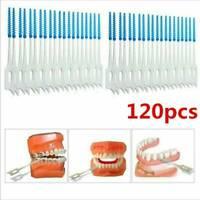120pc Teeth Toothpicks Dental Floss Picks Interdental Brush-Stick Tooth Clean_AU