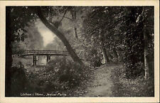 Lüchow in Hann. alte AK ~1930 Brücke Brücken Partie an der Jeetzel Wald Partie