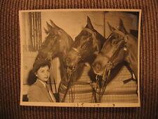 """Saddlebred """"Robin Hill Margene & Mam'zelle""""""""Topsy Turvy"""" Joanne Link Horse Photo"""