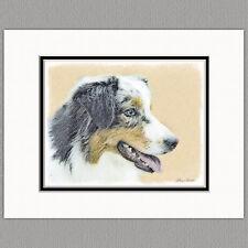 Australian Shepherd Original Art Print 8x10 Matted to 11x14