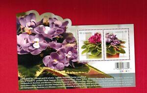 2010  # 2376 MINT CANADA  STAMPS  -  AFRICAN VIOLETS  FLOWERS - SOUVENIR SHEET