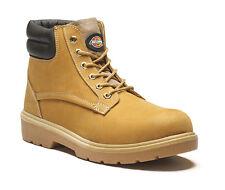 Chaussures de Sécurité montantes Dickies Donegal S1p SRA Miel 44