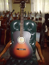 Recording King ROH-05 Solid Top Steel String 000 Size Acoustic Guitar