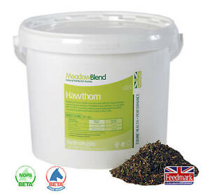 Feedmark Hawthorn *Supports the circulatory system* *Direct from Feedmark*