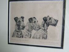 New listing Kirmse Orig.signed and titled etching Irish Terriers -Three Musketeers, 1925