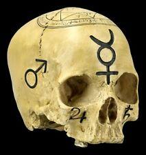 Tête de Mort Sorcellerie Crâne - Déco Figurine Crâne Rituel Crâne Magie