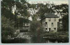 Albion MI Old Mill Race c1910 Postcard