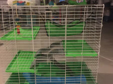 Kaytee My First Home & Fiesta Complete Ferret Starter Kit Pick Up In Howell Mi