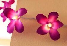 Purple Frangipanni Flowers LED Fairy Light 3M 20 Frangipanis Warm White Lights