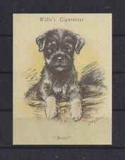 1940 Reissue Dawson Dog Art Uk Cigarette Trade Card Miniature Standard Schnauzer