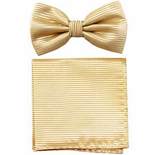 New formal Men's polyester pre-tied bow tie_hankie horizontal stripes ivory