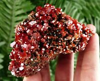 Amazing Top Quality Vanadinite, Crystal, Mineral, Natural Crystal