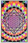 Sacred Geometry Blacklight Poster 23 x 35