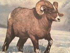 Charles Frace ( Bighorn Country ) autographed lithograph Print# 361/2500