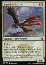 Sage-Eye Harrier foil | nm/m | Khan of tarkir | Magic mtg