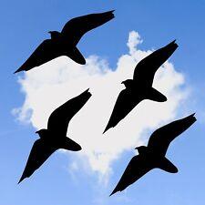4x Vogel Aufkleber 40cm, Fensteraufkleber, Warnvögel, Vogelschutz Sticker V4