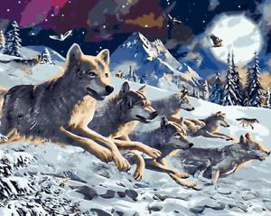 Large Paint By Numbers Kit 50*40cm 8034 Fun Art Decor Wolves AU